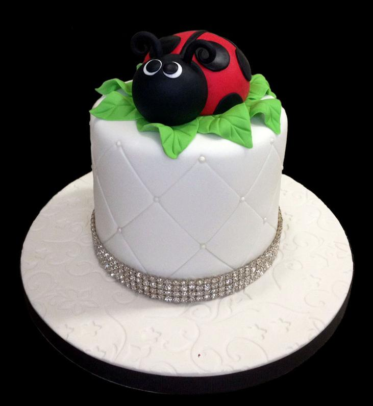 Lady Bug Custom Fondant Cake